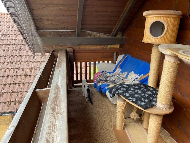 Balkon mit Versteckmöglichkeiten